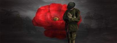 Remembrance Day Soldier and Poppy